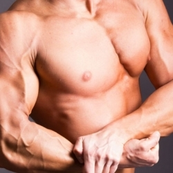 How to Maximize Muscle Adaptation